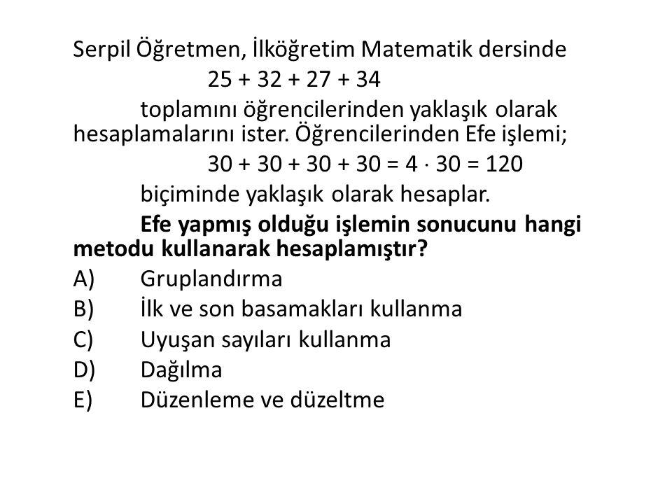 Serpil Öğretmen, İlköğretim Matematik dersinde