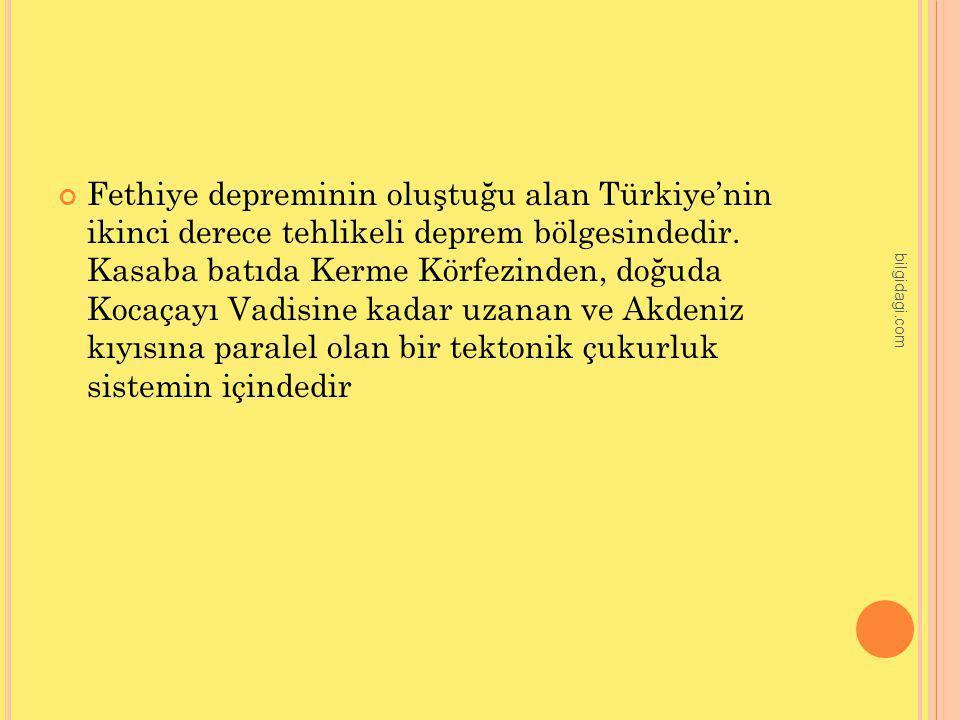 Fethiye depreminin oluştuğu alan Türkiye'nin ikinci derece tehlikeli deprem bölgesindedir. Kasaba batıda Kerme Körfezinden, doğuda Kocaçayı Vadisine kadar uzanan ve Akdeniz kıyısına paralel olan bir tektonik çukurluk sistemin içindedir
