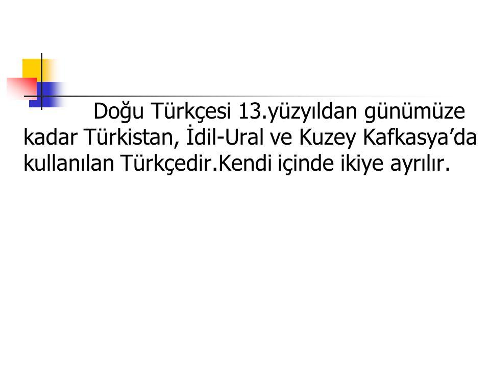 Doğu Türkçesi 13.yüzyıldan günümüze kadar Türkistan, İdil-Ural ve Kuzey Kafkasya'da kullanılan Türkçedir.Kendi içinde ikiye ayrılır.