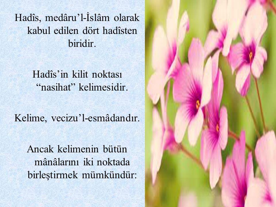Hadîs, medâru'l-İslâm olarak kabul edilen dört hadîsten biridir.