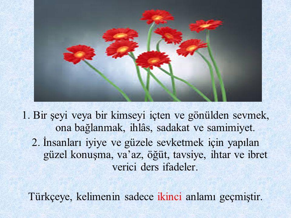 Türkçeye, kelimenin sadece ikinci anlamı geçmiştir.