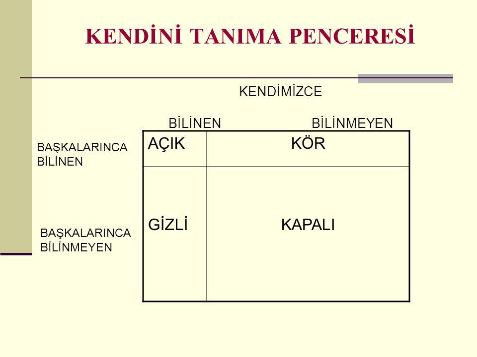 KENDİNİ TANIMA PENCERESİ