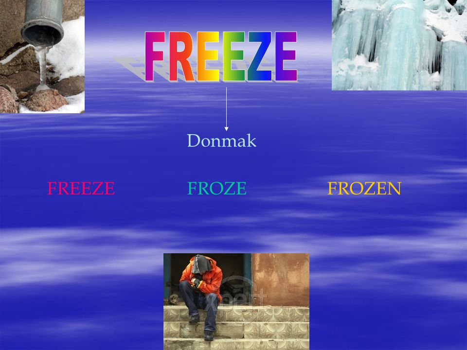 FREEZE Donmak FREEZE FROZE FROZEN