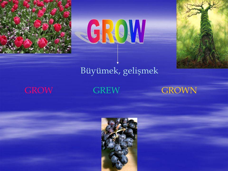 GROW Büyümek, gelişmek GROW GREW GROWN