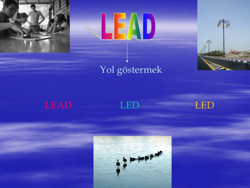 LEAD Yol göstermek LEAD LED LED