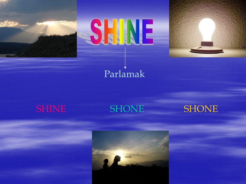SHINE Parlamak SHINE SHONE SHONE