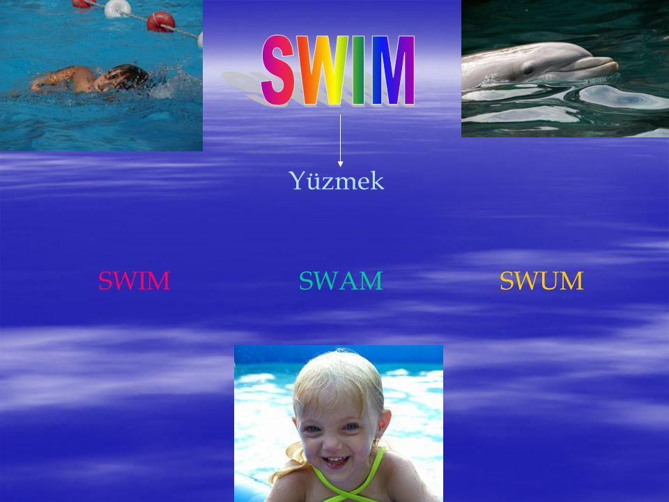 SWIM Yüzmek SWIM SWAM SWUM