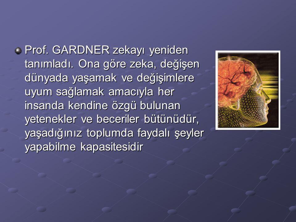 Prof. GARDNER zekayı yeniden tanımladı