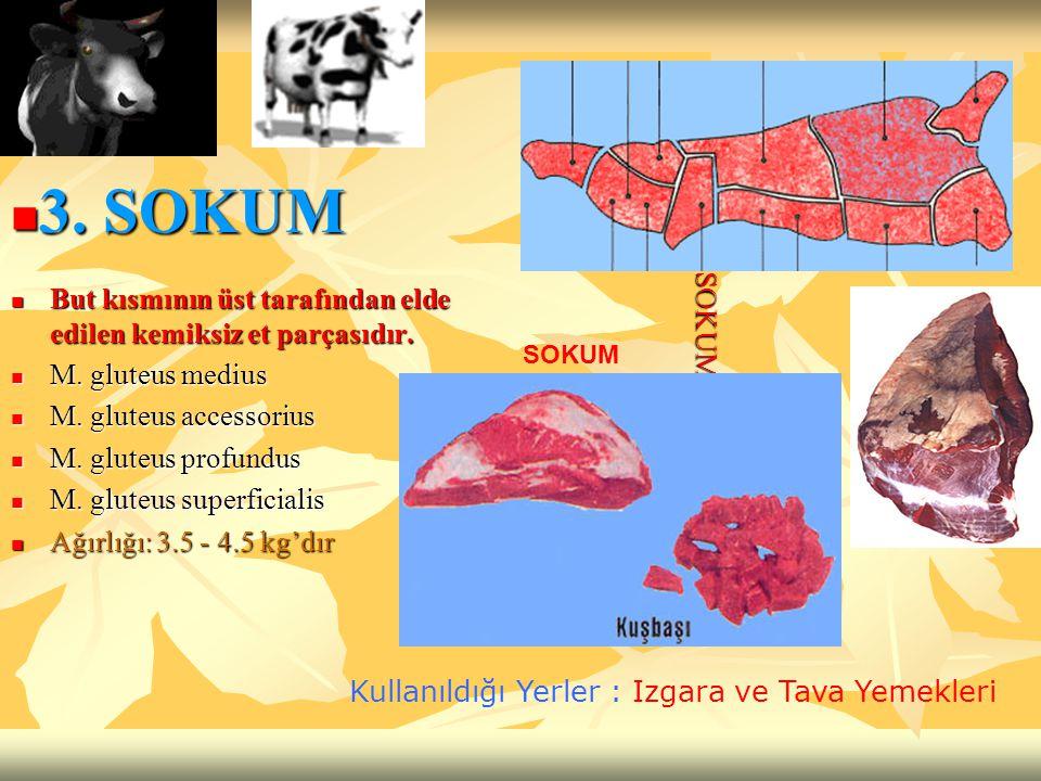 3. SOKUM But kısmının üst tarafından elde edilen kemiksiz et parçasıdır. M. gluteus medius. M. gluteus accessorius.