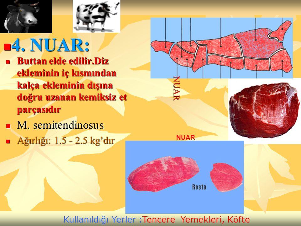 4. NUAR: M. semitendinosus