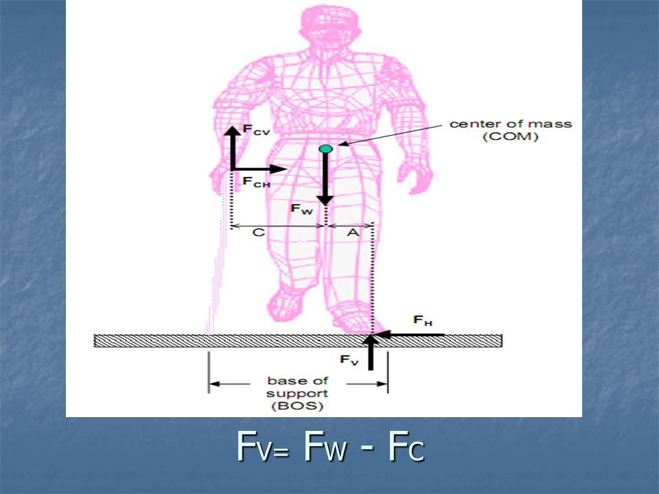 FV= FW - FC