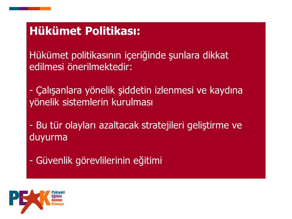 Hükümet Politikası: Hükümet politikasının içeriğinde şunlara dikkat edilmesi önerilmektedir: