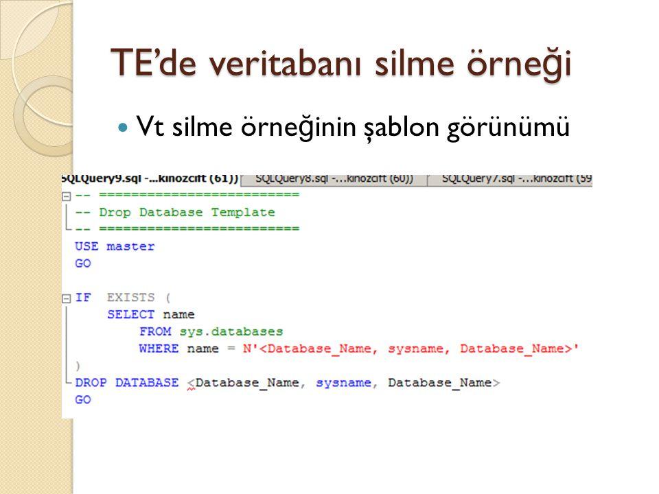 TE'de veritabanı silme örneği