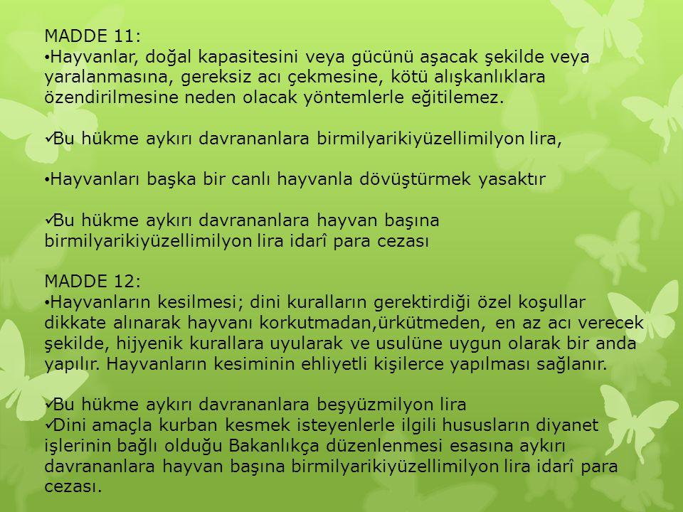 MADDE 11: