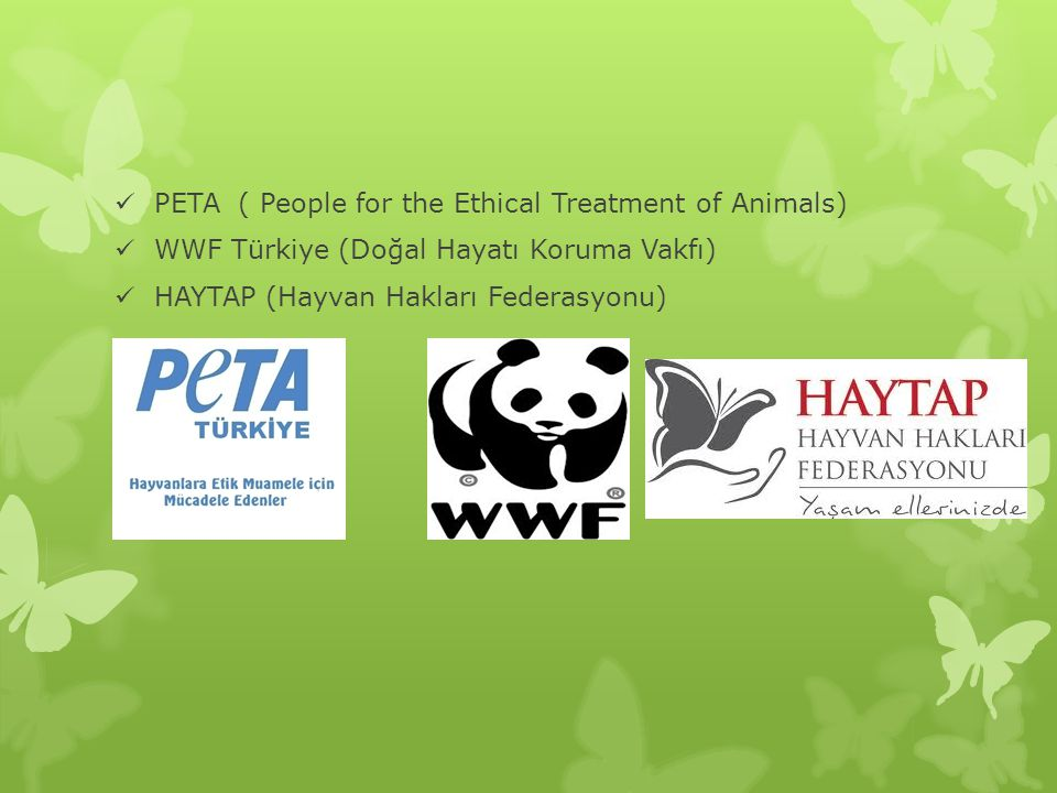 PETA ( People for the Ethical Treatment of Animals)
