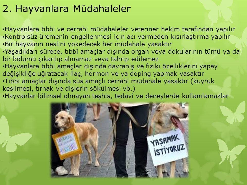 2. Hayvanlara Müdahaleler