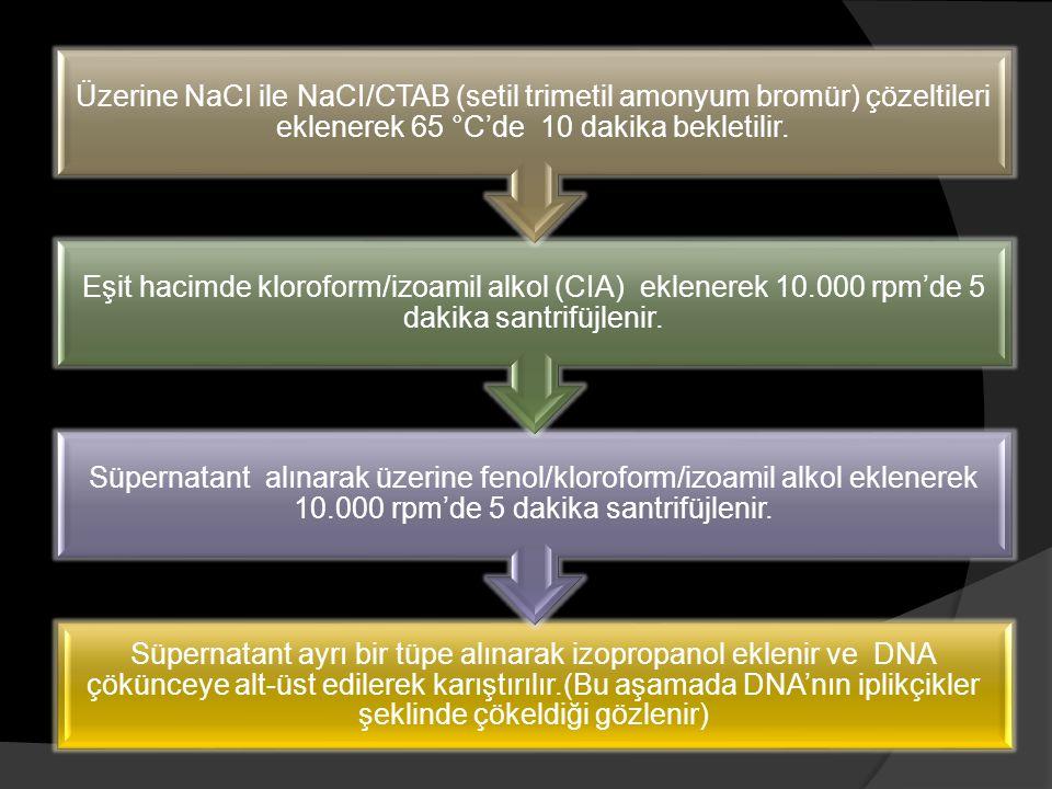 Üzerine NaCI ile NaCI/CTAB (setil trimetil amonyum bromür) çözeltileri eklenerek 65 °C'de 10 dakika bekletilir.