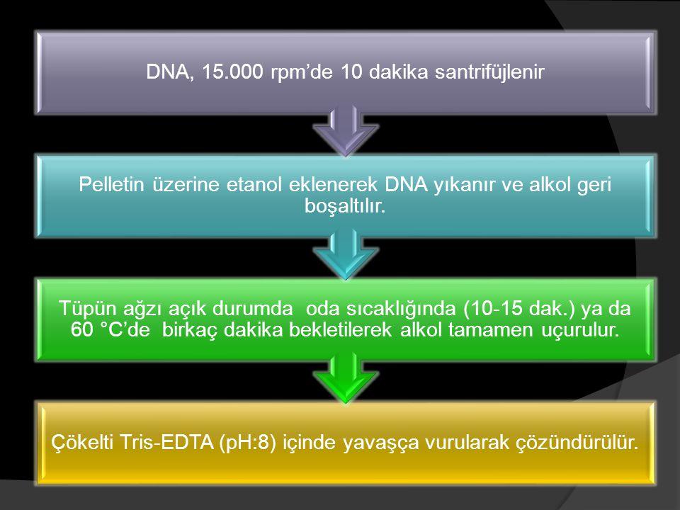 DNA, 15.000 rpm'de 10 dakika santrifüjlenir