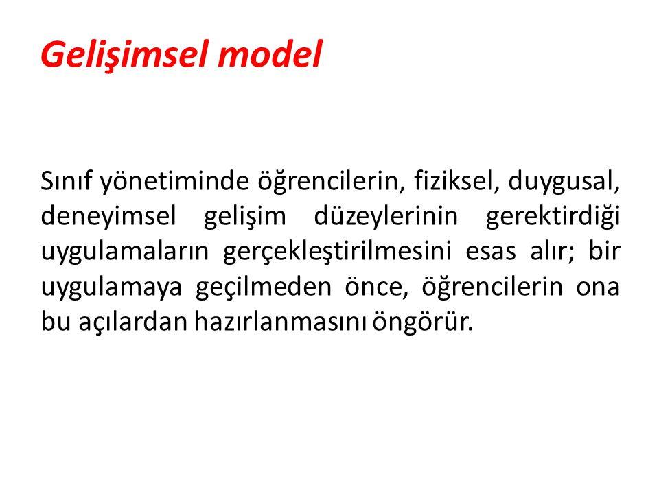 Gelişimsel model