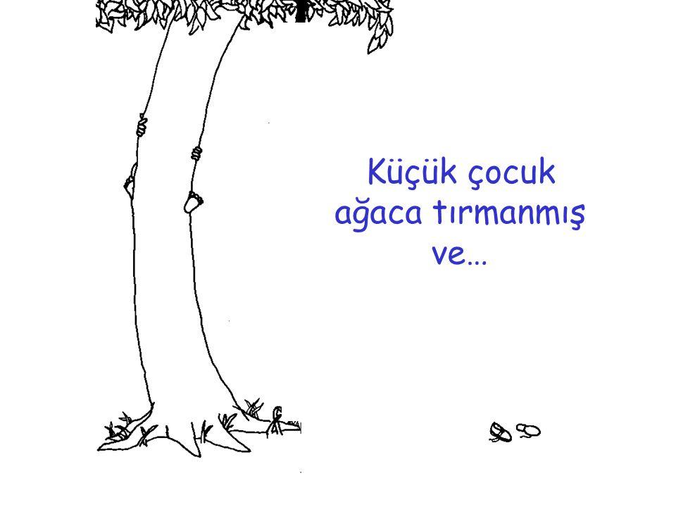 Küçük çocuk ağaca tırmanmış ve…