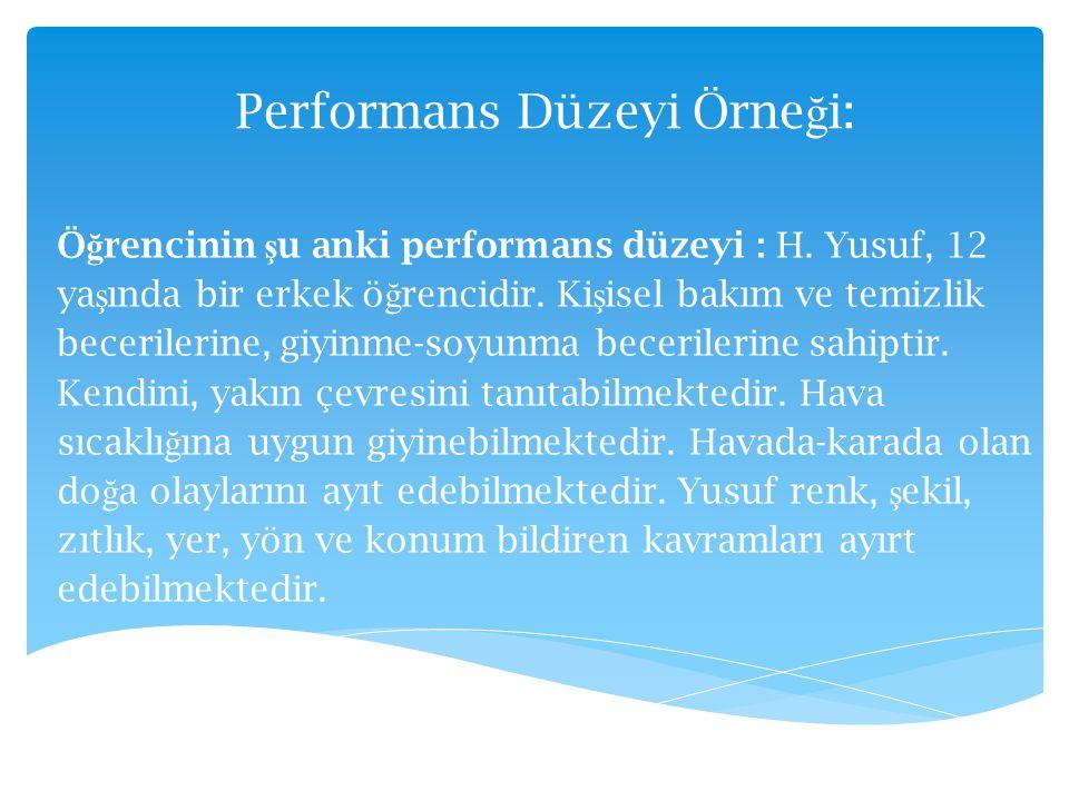 Performans Düzeyi Örneği: