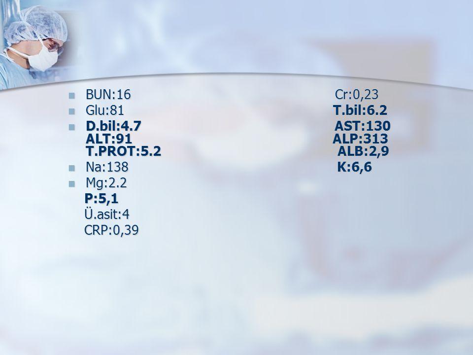 BUN:16 Cr:0,23 Glu:81 T.bil:6.2.