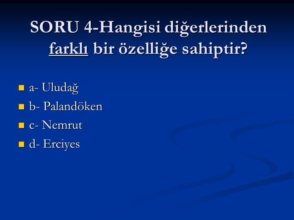 SORU 4-Hangisi diğerlerinden farklı bir özelliğe sahiptir