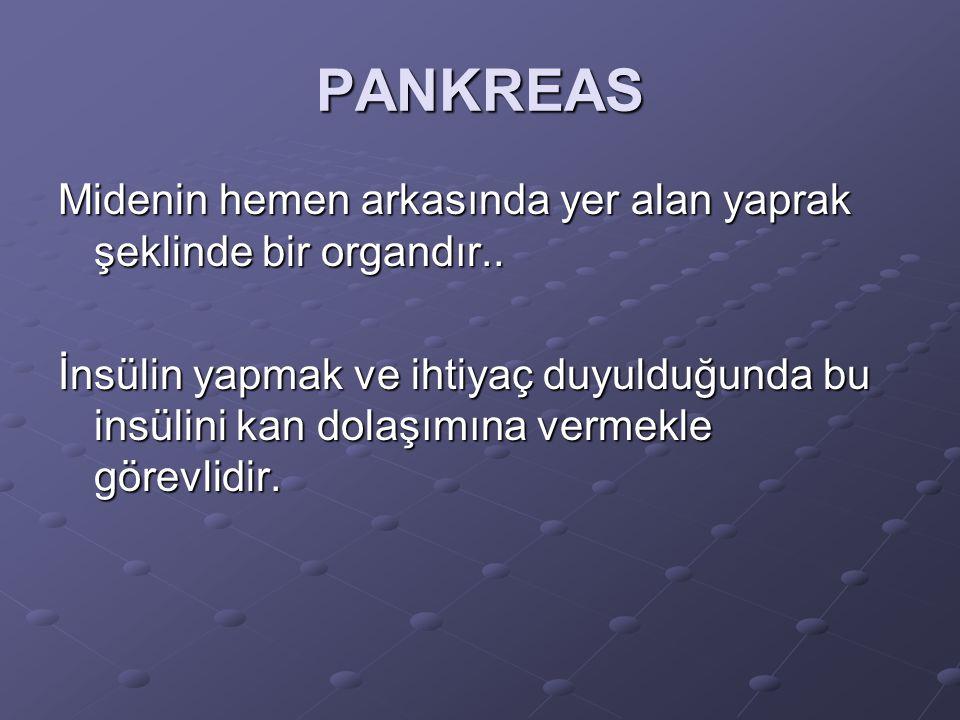 PANKREAS Midenin hemen arkasında yer alan yaprak şeklinde bir organdır..