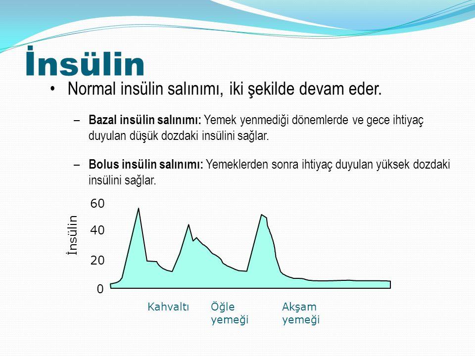 İnsülin Normal insülin salınımı, iki şekilde devam eder.