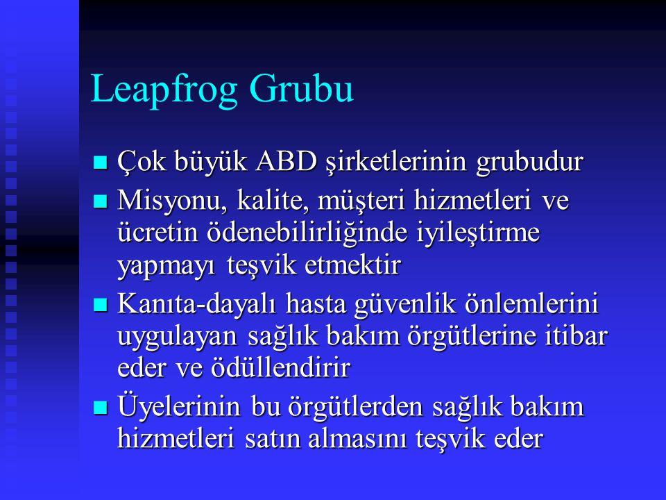 Leapfrog Grubu Çok büyük ABD şirketlerinin grubudur
