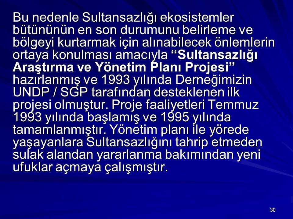 Bu nedenle Sultansazlığı ekosistemler bütününün en son durumunu belirleme ve bölgeyi kurtarmak için alınabilecek önlemlerin ortaya konulması amacıyla Sultansazlığı Araştırma ve Yönetim Planı Projesi hazırlanmış ve 1993 yılında Derneğimizin UNDP / SGP tarafından desteklenen ilk projesi olmuştur.