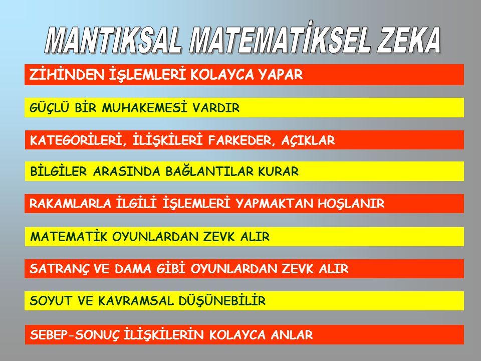 MANTIKSAL MATEMATİKSEL ZEKA
