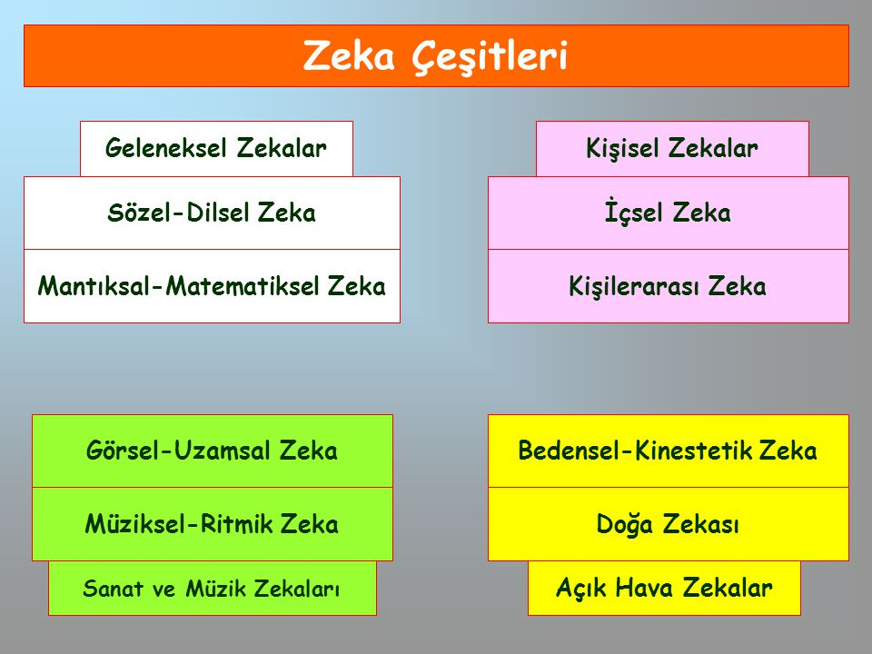 Zeka Çeşitleri Sözel-Dilsel Zeka Mantıksal-Matematiksel Zeka