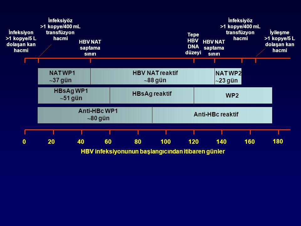 HBV infeksiyonunun başlangıcından itibaren günler