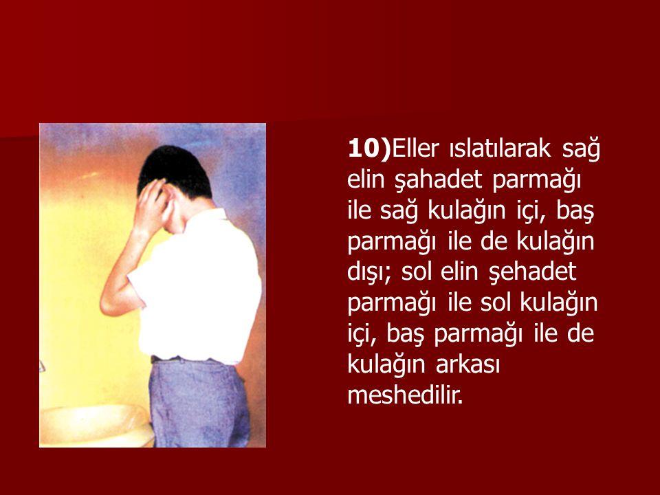 10)Eller ıslatılarak sağ elin şahadet parmağı ile sağ kulağın içi, baş parmağı ile de kulağın dışı; sol elin şehadet parmağı ile sol kulağın içi, baş parmağı ile de kulağın arkası meshedilir.