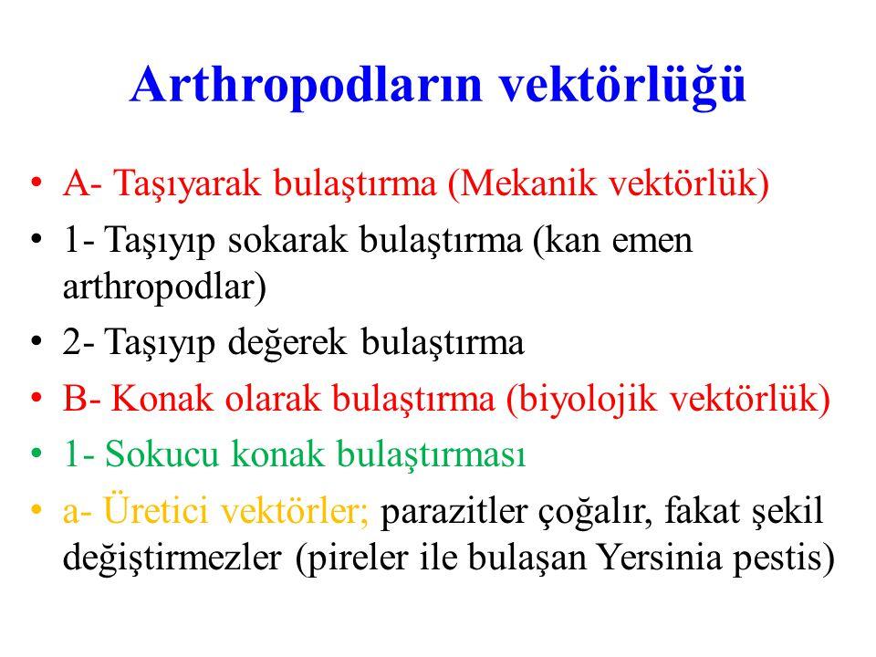Arthropodların vektörlüğü