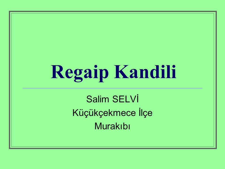 Salim SELVİ Küçükçekmece İlçe Murakıbı