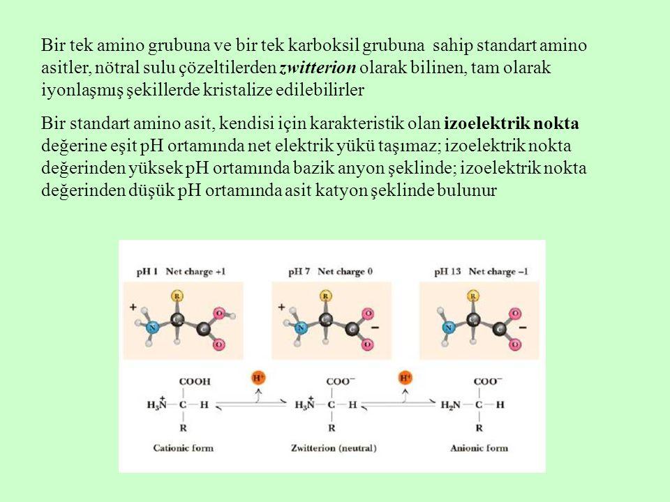 Bir tek amino grubuna ve bir tek karboksil grubuna sahip standart amino asitler, nötral sulu çözeltilerden zwitterion olarak bilinen, tam olarak iyonlaşmış şekillerde kristalize edilebilirler