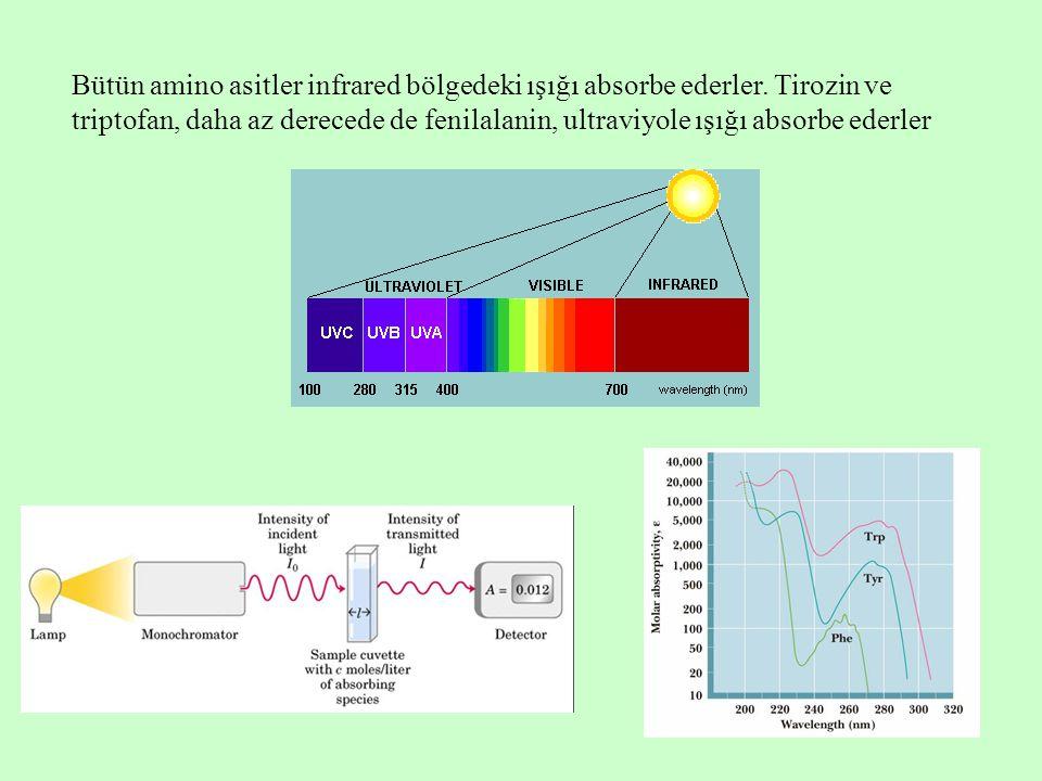 Bütün amino asitler infrared bölgedeki ışığı absorbe ederler
