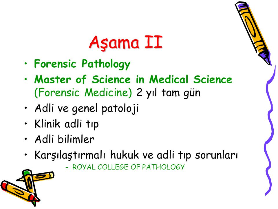 Aşama II Forensic Pathology