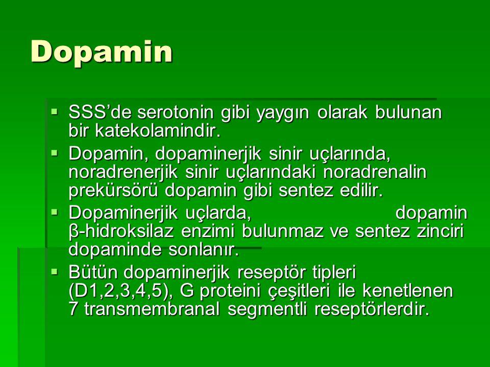 Dopamin SSS'de serotonin gibi yaygın olarak bulunan bir katekolamindir.