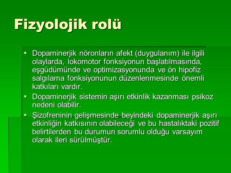 Fizyolojik rolü