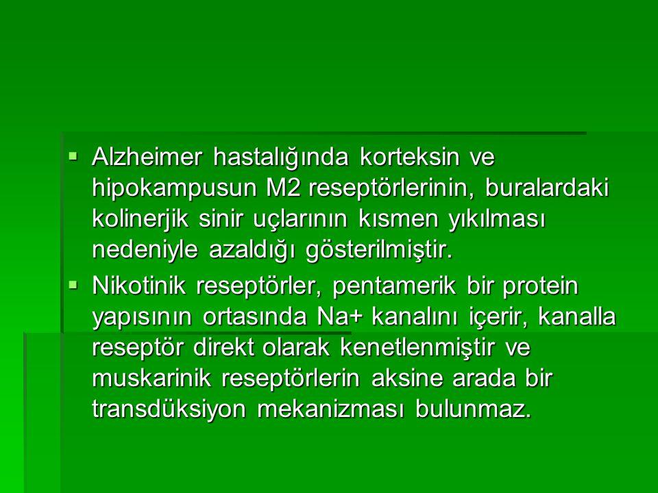 Alzheimer hastalığında korteksin ve hipokampusun M2 reseptörlerinin, buralardaki kolinerjik sinir uçlarının kısmen yıkılması nedeniyle azaldığı gösterilmiştir.