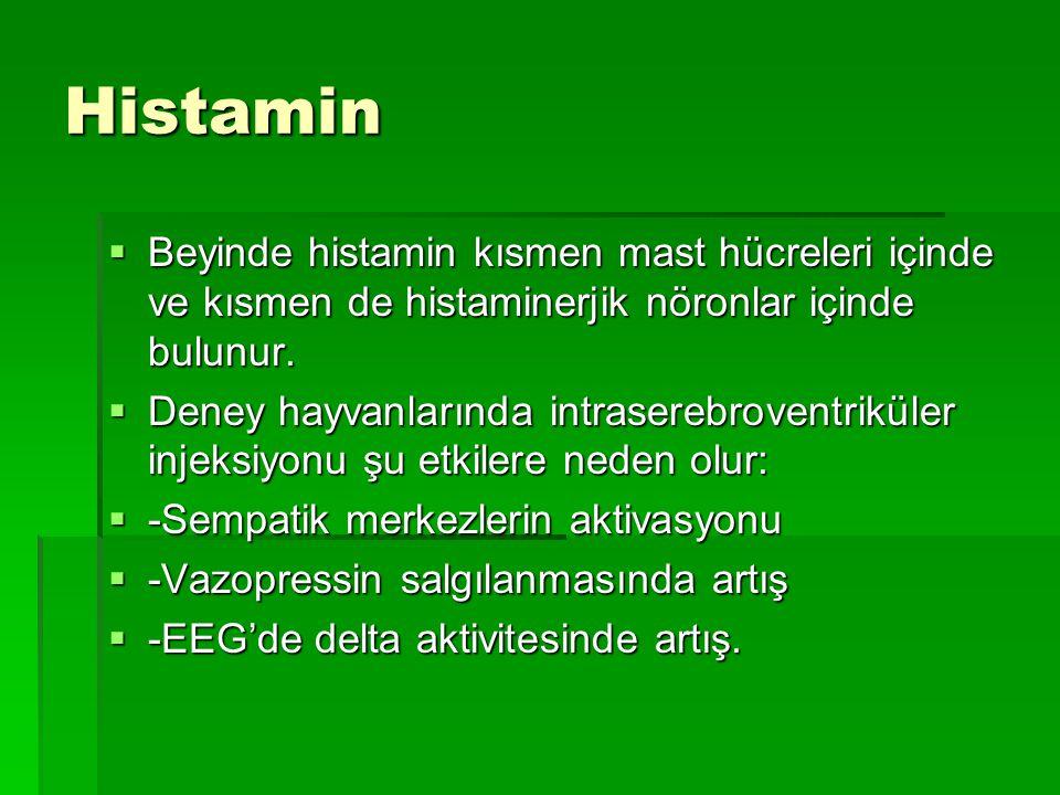 Histamin Beyinde histamin kısmen mast hücreleri içinde ve kısmen de histaminerjik nöronlar içinde bulunur.