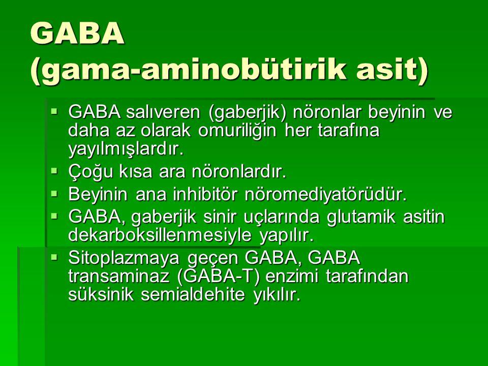 GABA (gama-aminobütirik asit)