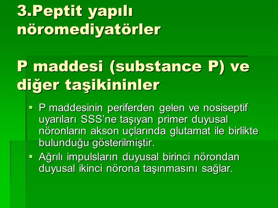 3.Peptit yapılı nöromediyatörler P maddesi (substance P) ve diğer taşikininler