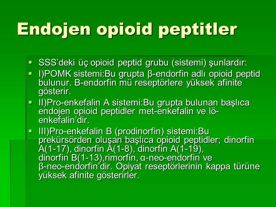 Endojen opioid peptitler