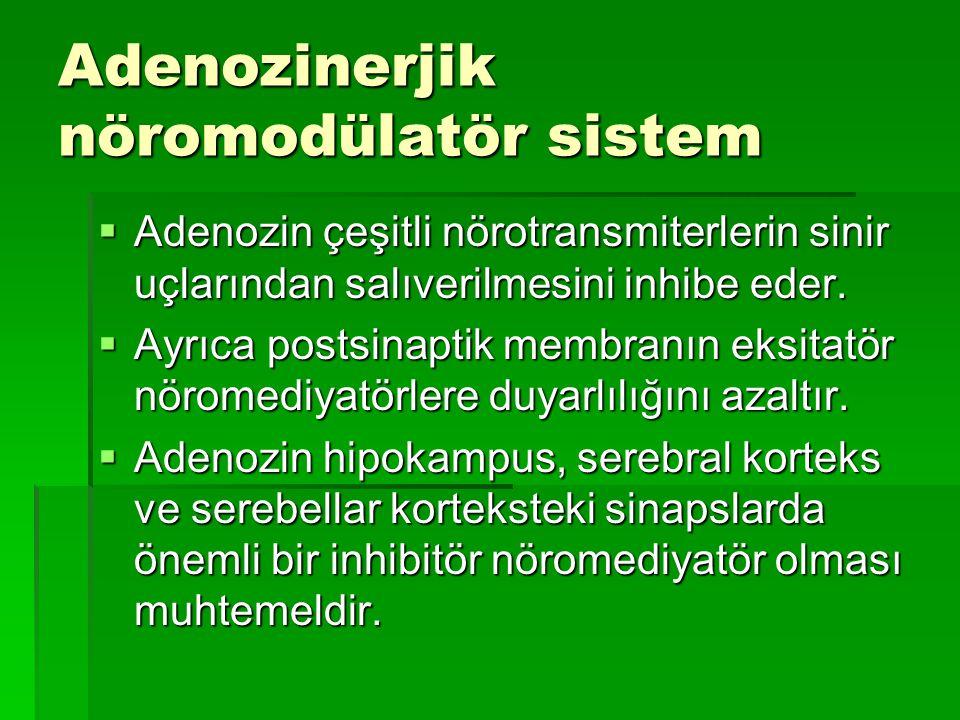 Adenozinerjik nöromodülatör sistem