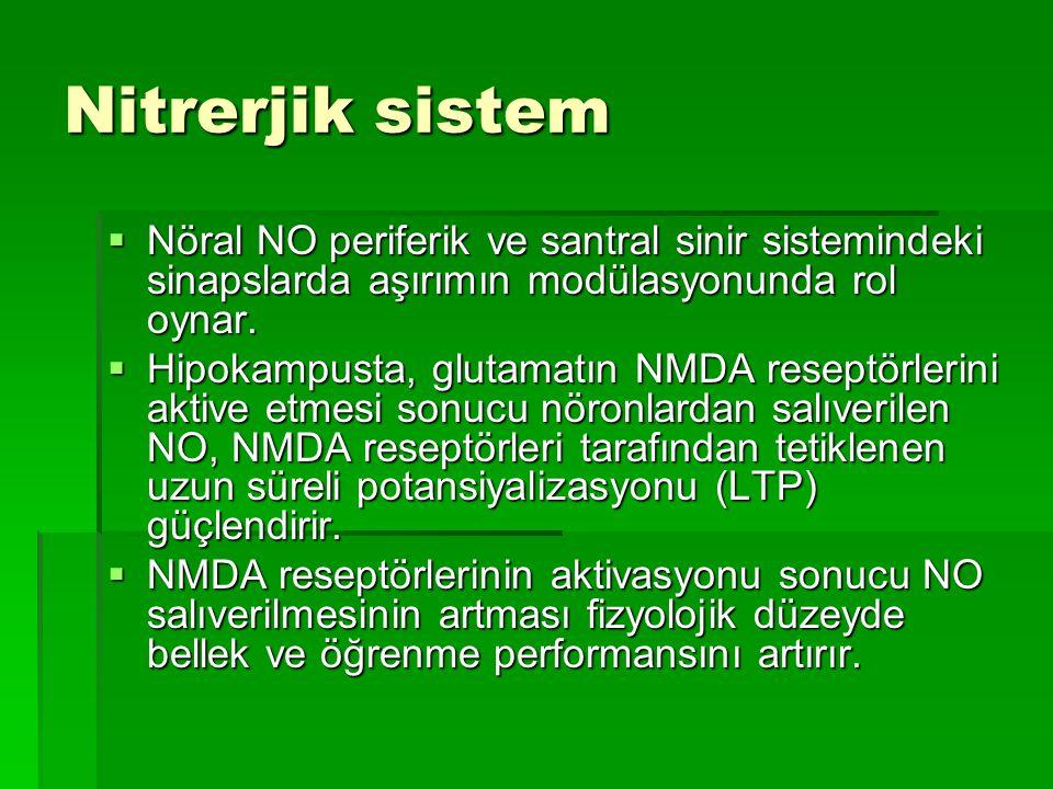 Nitrerjik sistem Nöral NO periferik ve santral sinir sistemindeki sinapslarda aşırımın modülasyonunda rol oynar.