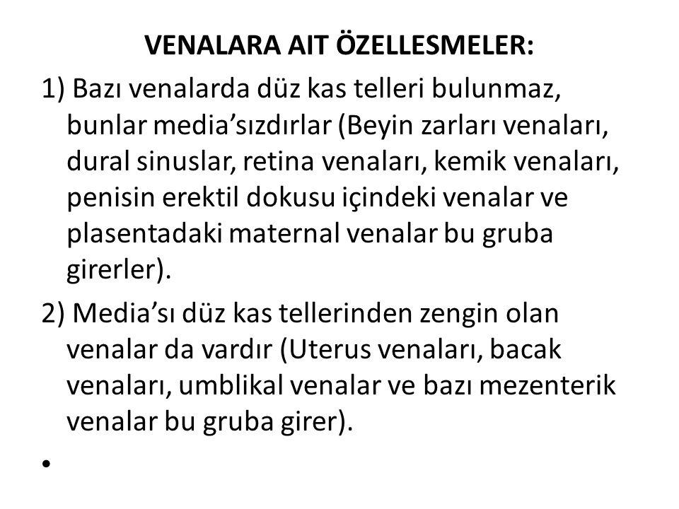 VENALARA AIT ÖZELLESMELER:
